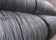 In Black Surface Wire Rod Coils / Hot Rolling High Carbon Steel Rod